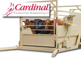 Msf Farm Livestock Products